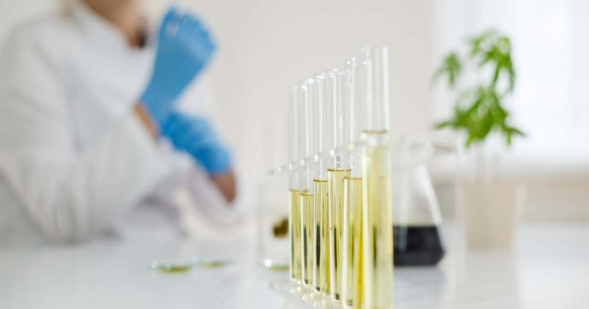 vials of extracted cannabis oil