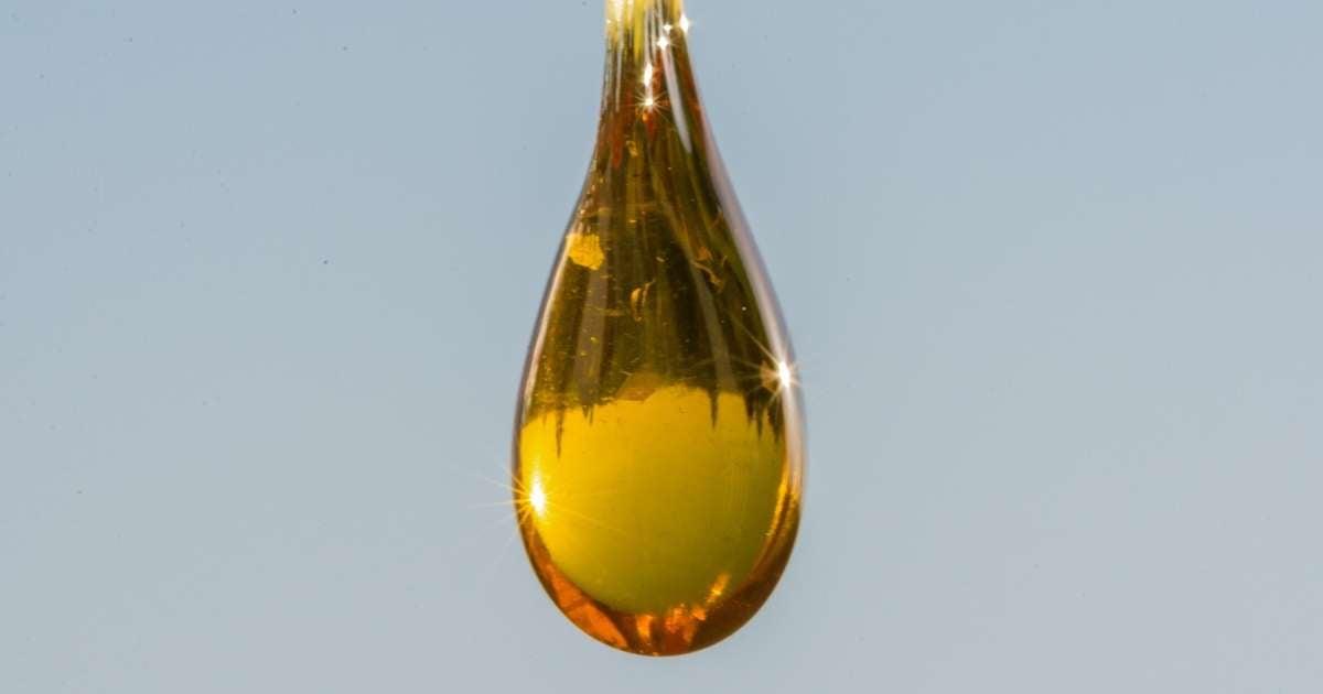 BHO crude oil